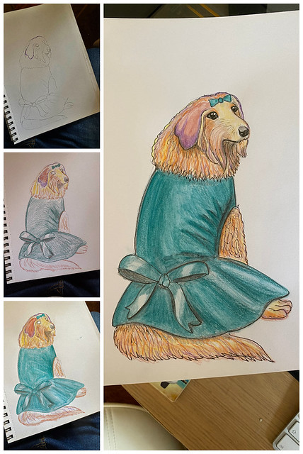 Dog in Dress #2