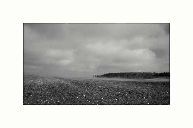 Field  [explored]