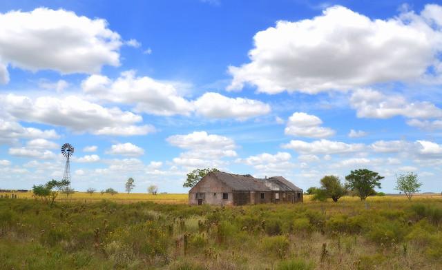 El Eucaliptus, Uruguay