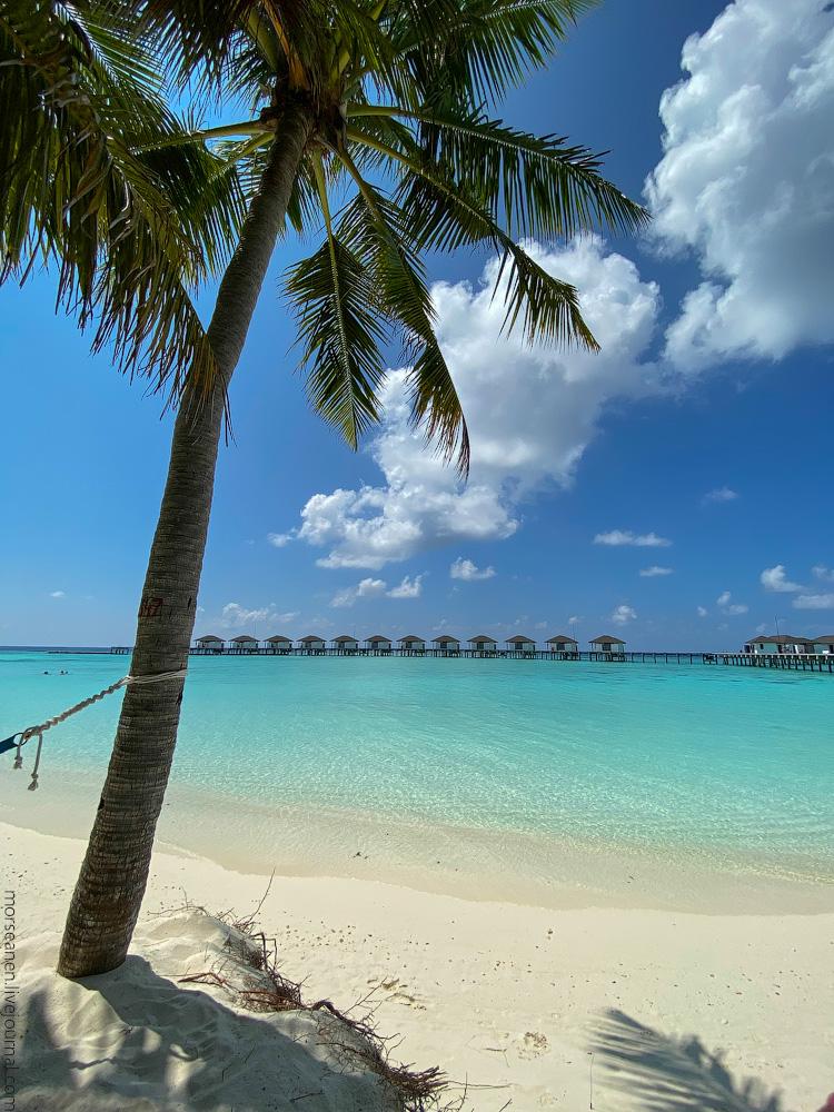 Maledives-(71)
