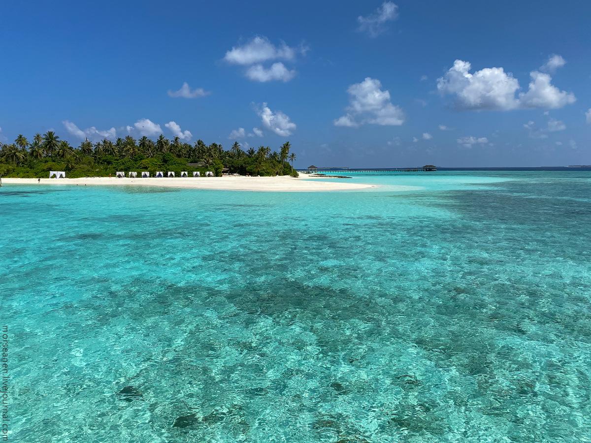 Maledives-(70)