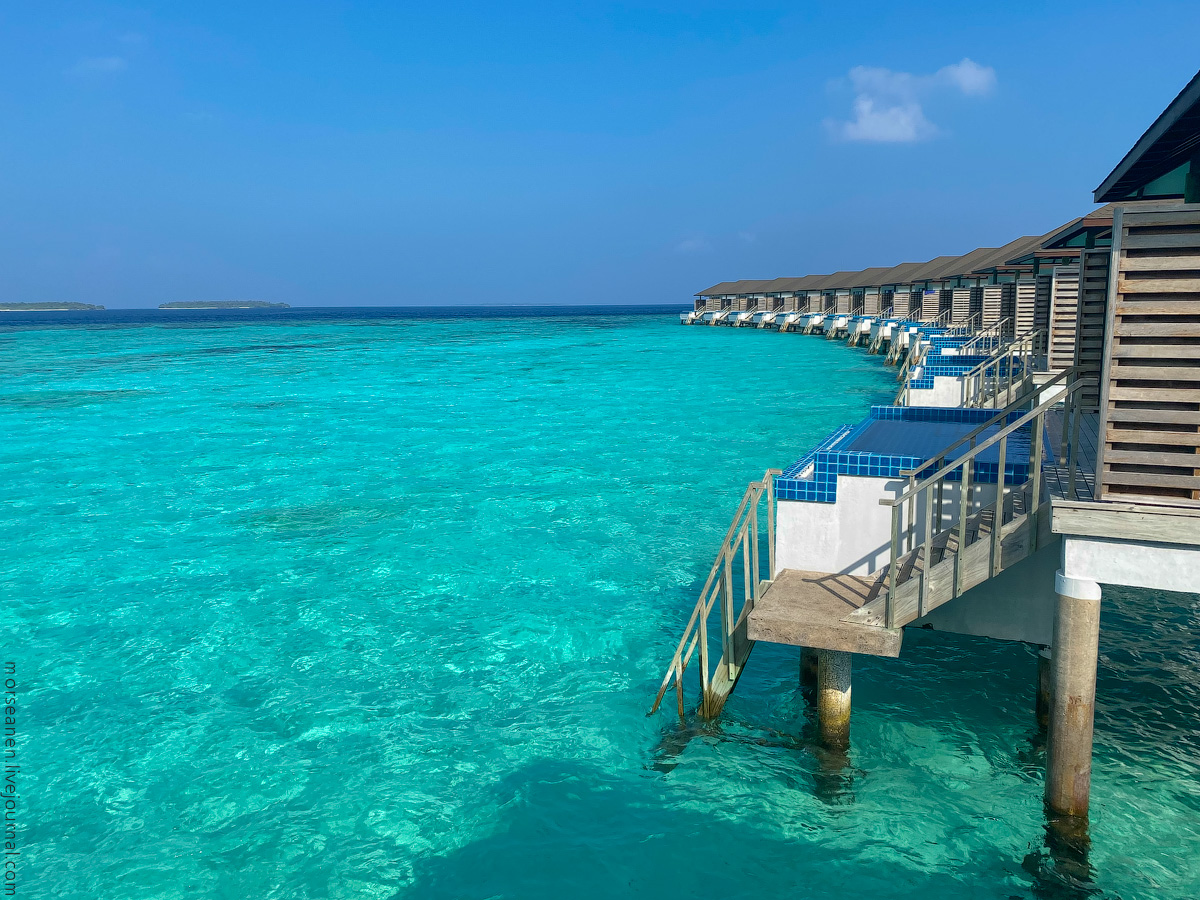 Maledives-(42)