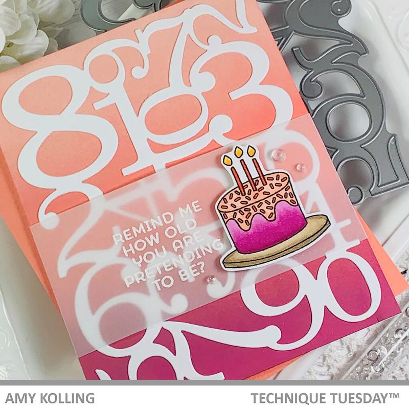 AmyK_BirthdayCelebration3 (3)