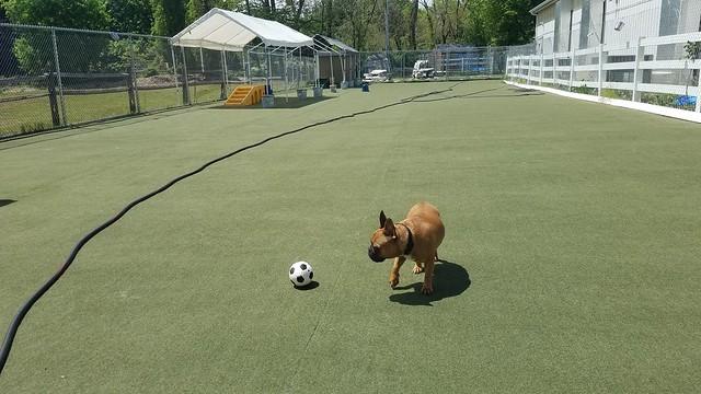 05_04_21 Soccer Play :-)