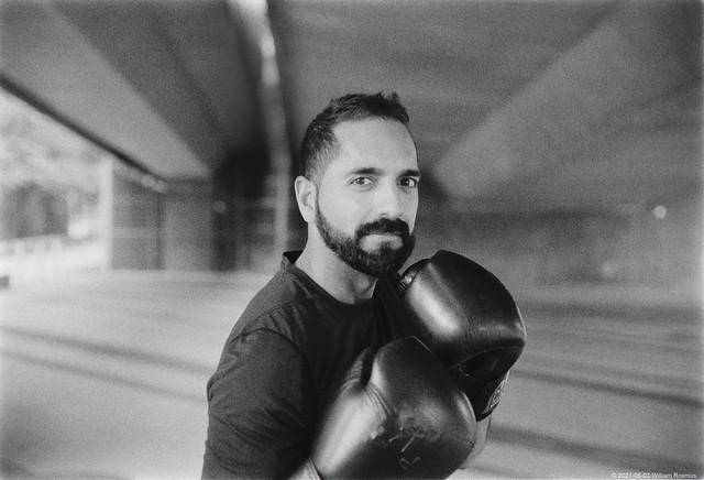 The Boxer - analog