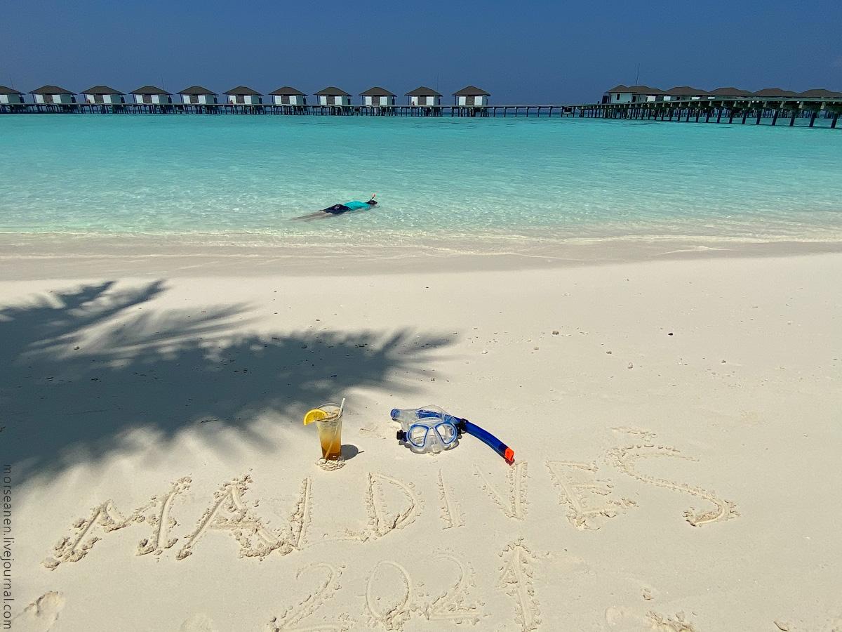 Maledives-(56)
