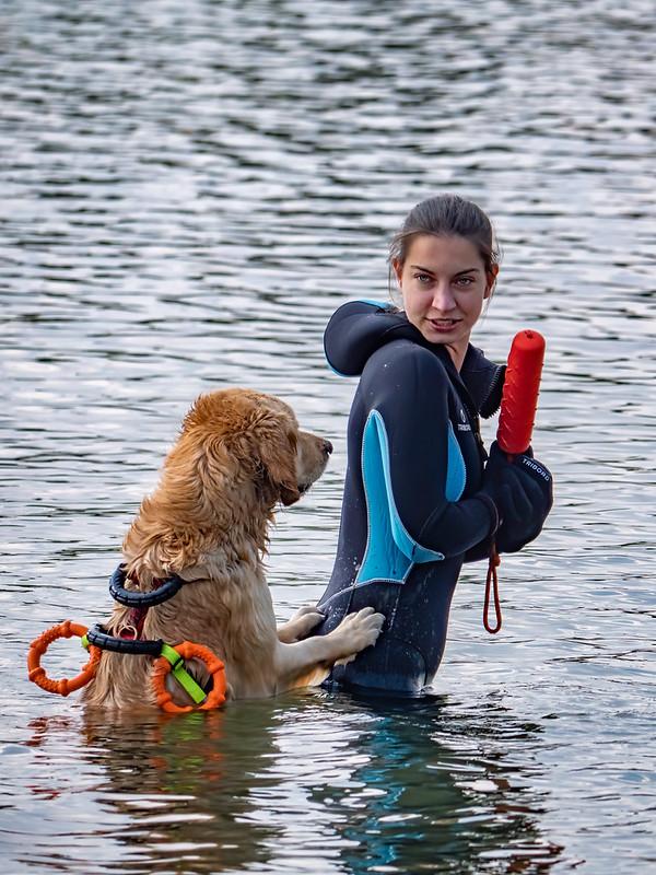 L'entraînement des chiens sauveteurs... 51158083232_b2a8bb0402_c