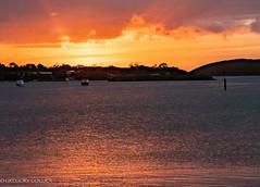 Coffin Bay sunset 2.jpg