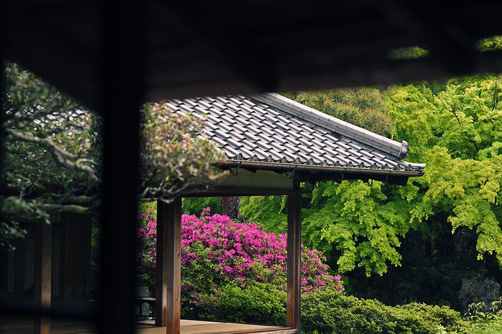 Kyoto Shoren-in Temple in Rain