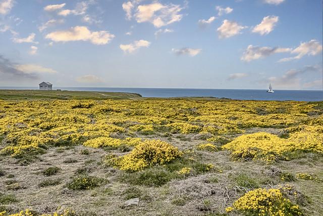 DSC05601 Île de Groix