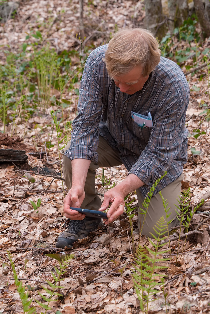 Steve photographing a Painted Trillium