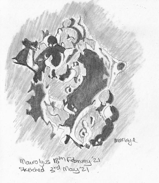 Lunar Crater Maurolycus 03/05/21