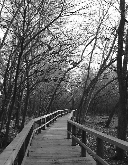 A Cold long Walk...