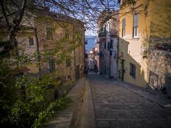 La vita nell'azzurro di Porto Santo Stefano - Life in the blue of Porto Santo Stefano