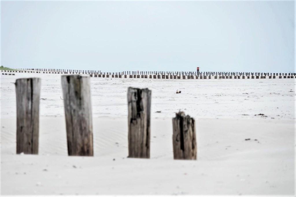 Strand Ameland.