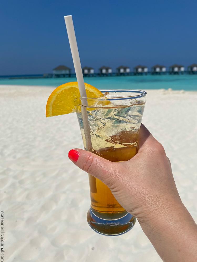 Maledives-(54)