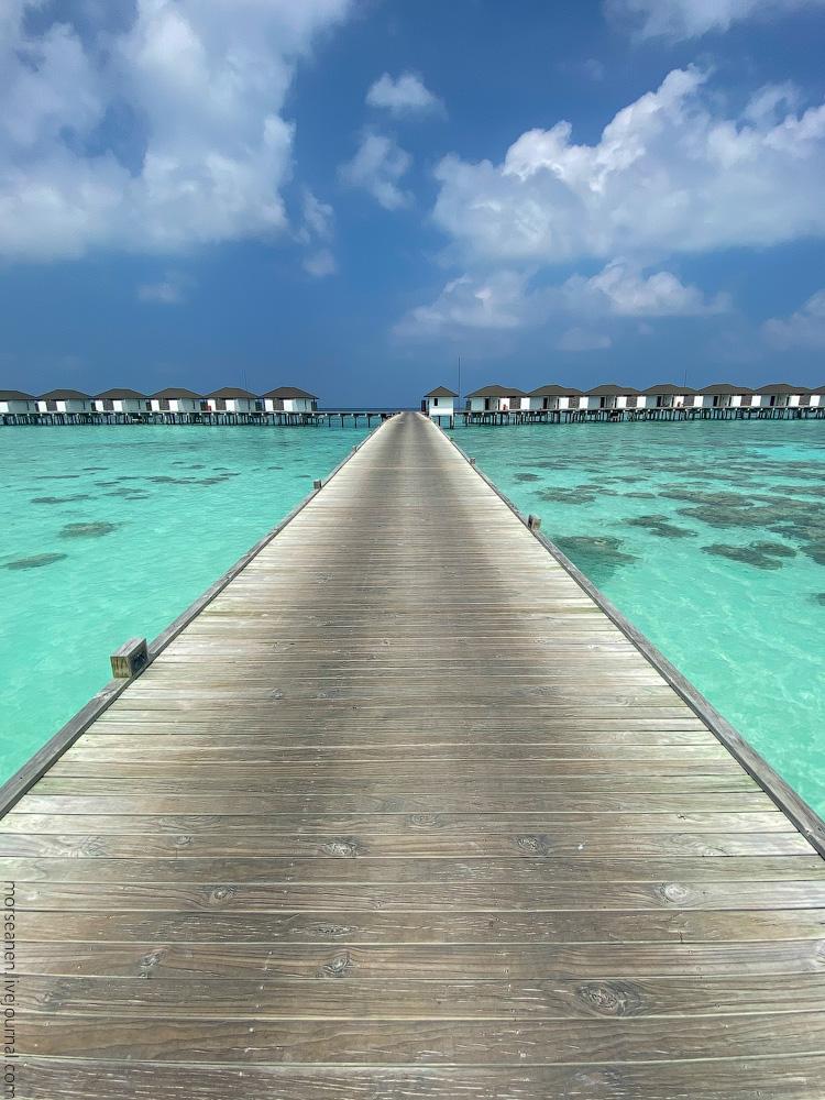 Maledives-(38)