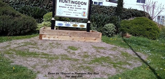 Raised bed (Reduced) on Huntingdon Ring Road 24th April 2021