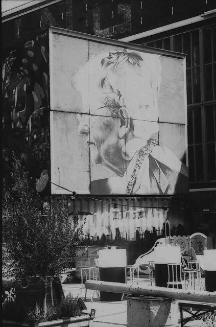 Amsterdam yard