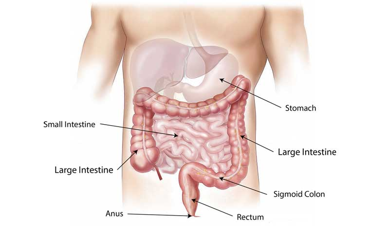 Regular screenings can help save lives for men with colorectal cancer