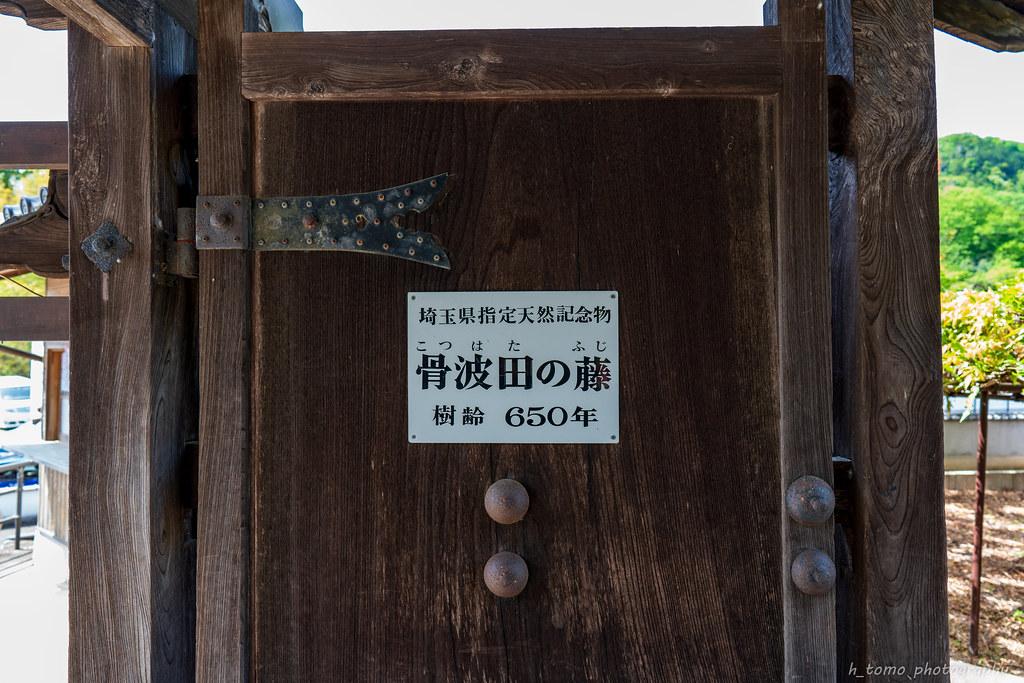 7R301536