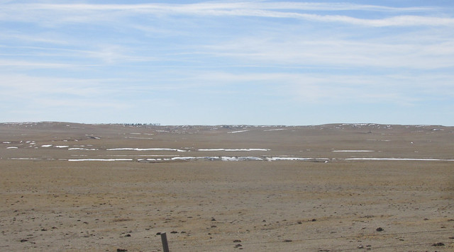 Grassland and melting snow
