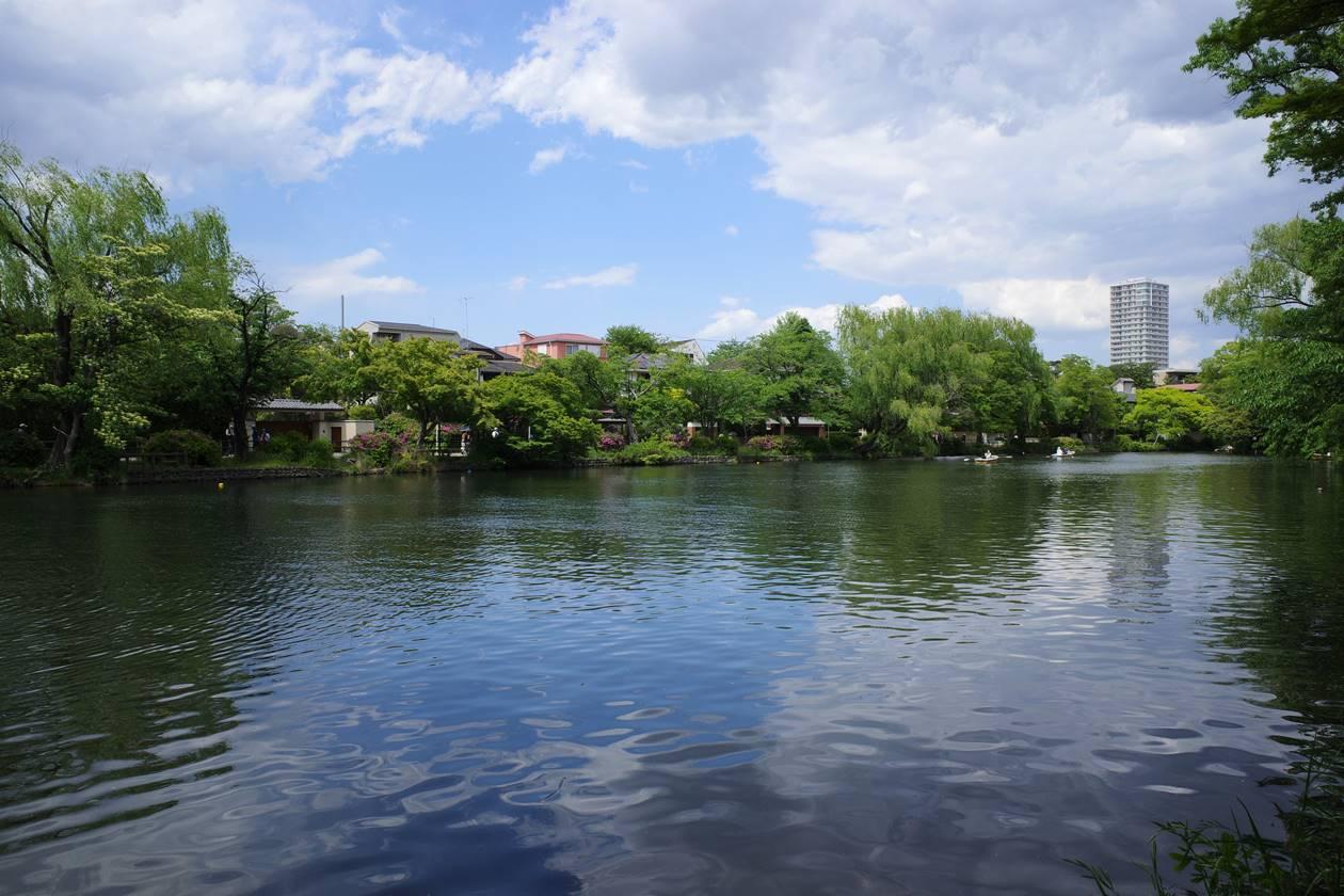 石神井公園・石神井池