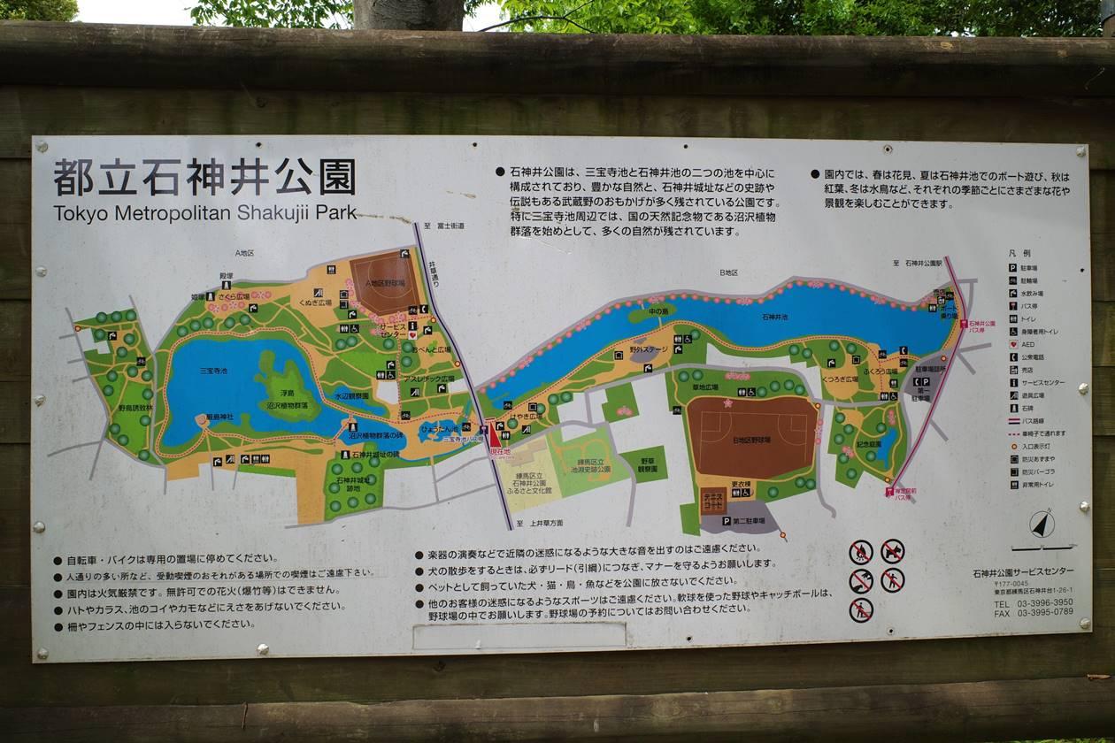 石神井公園地図