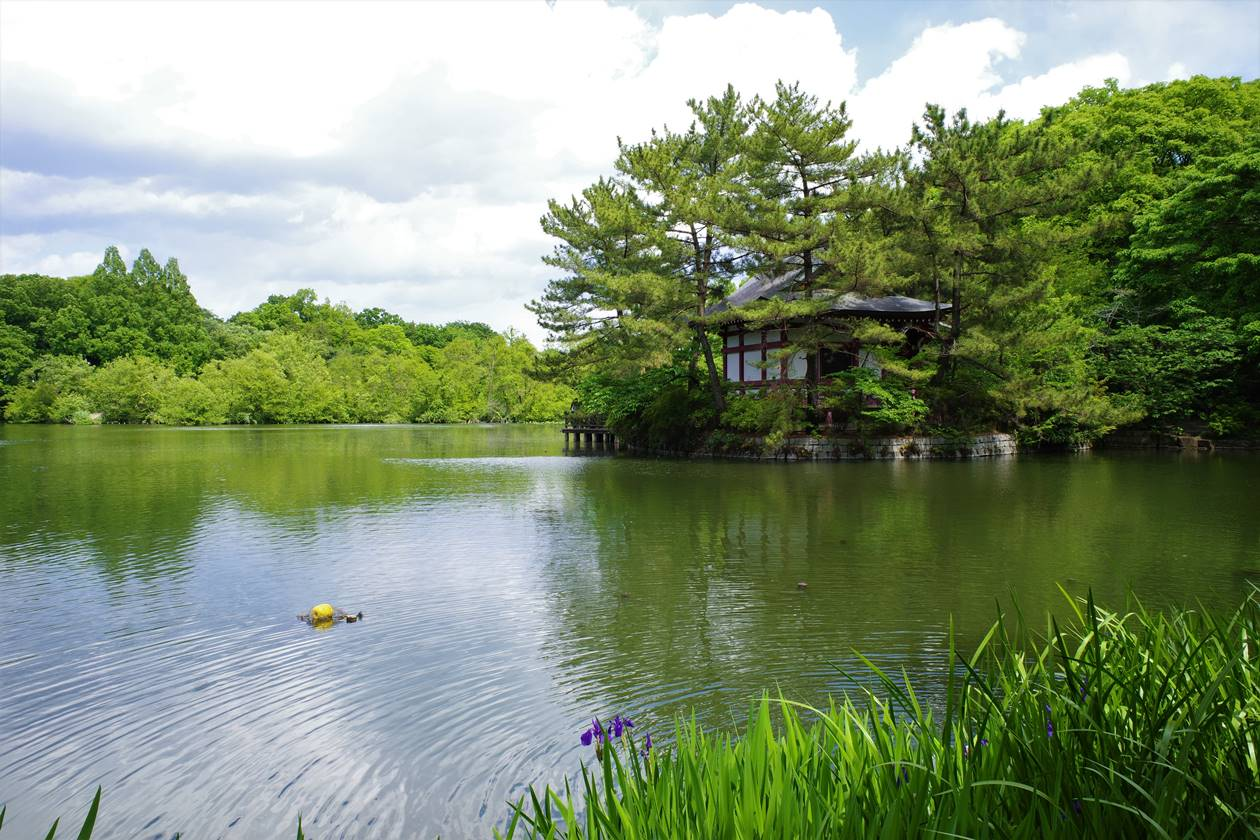 石神井公園・三宝寺池と厳島神社