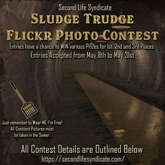 SLS Sludge Trudge Flickr Photo Contest 2021