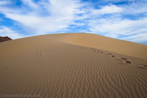 Our footprints along the ridge of one of the Ibex Dunes, Death Valley Ntional Park, California
