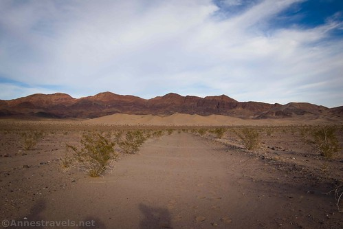 Hiking along the old mining road toward the Ibex Dunes, Death Valley National Park, California