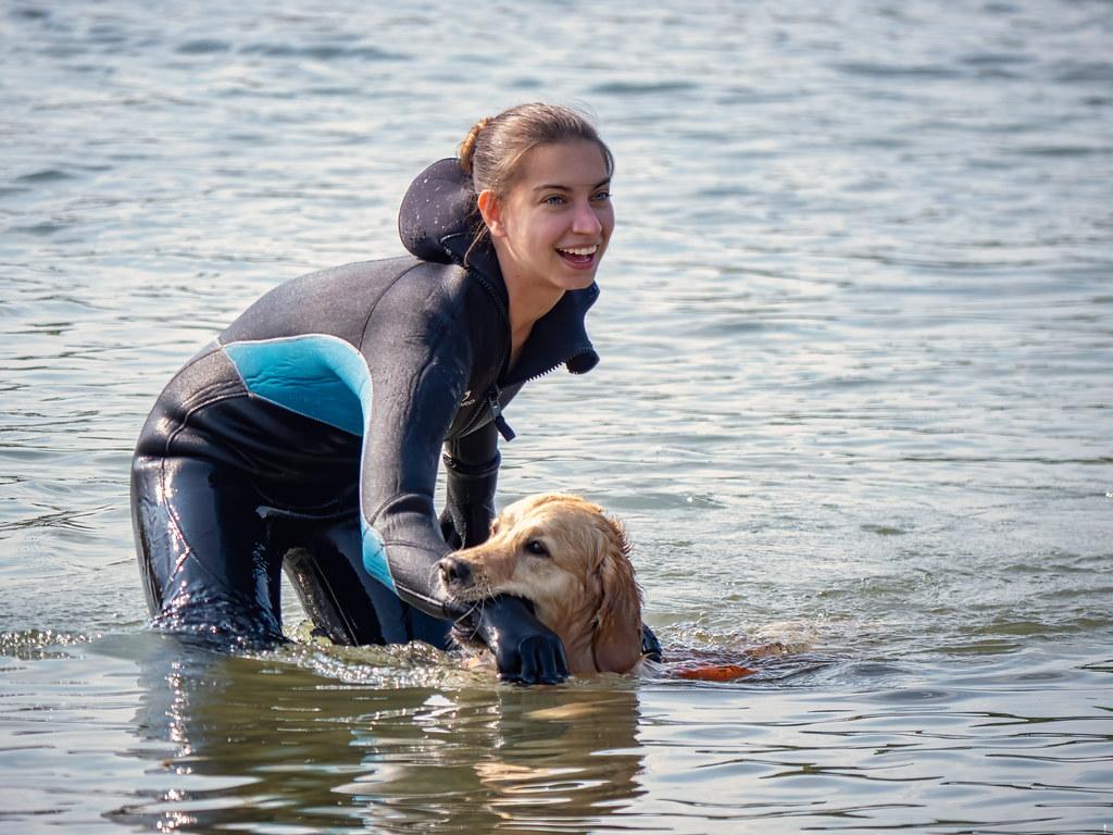 L'entraînement des chiens sauveteurs... 51159526009_3a503abcd4_b
