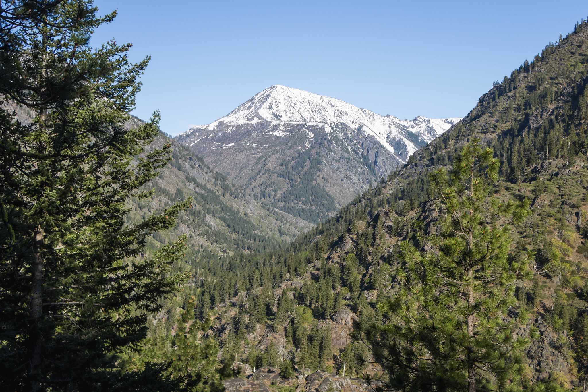 Trailside view of Icicle Canyon