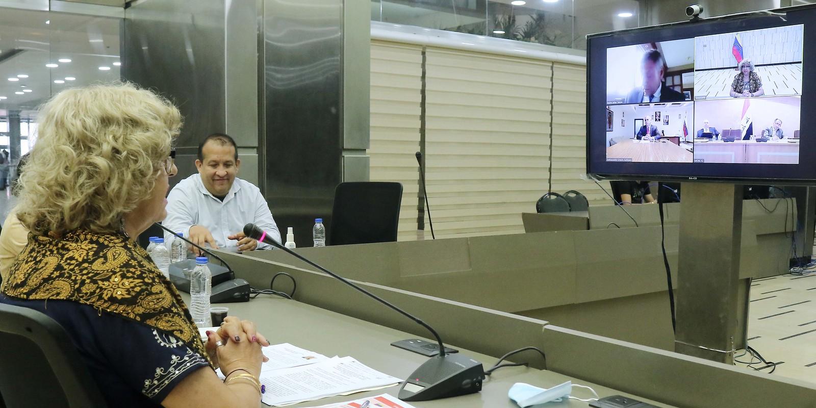 Videoconferencia con el Primer Viceministro de Exteriores de la República de Irak, Nazar Al Khairallah
