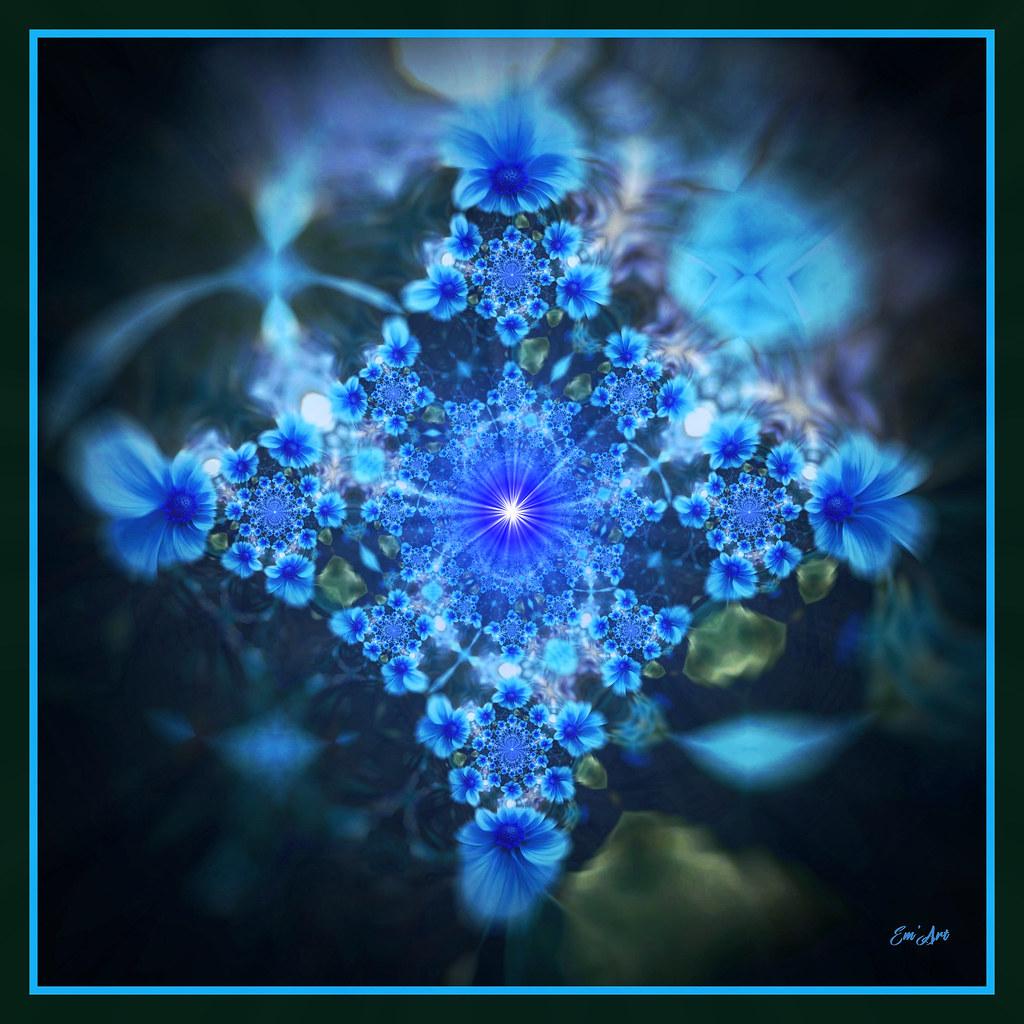 Bleuets Solaire - Solar Cornflowers