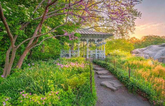 Spring flowers 春滿園