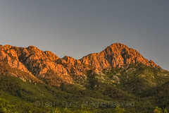 Wasson Peak in Saguaro National Park