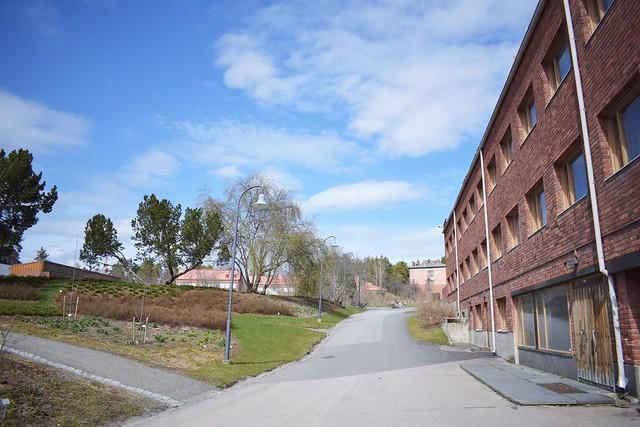 yliopisto3