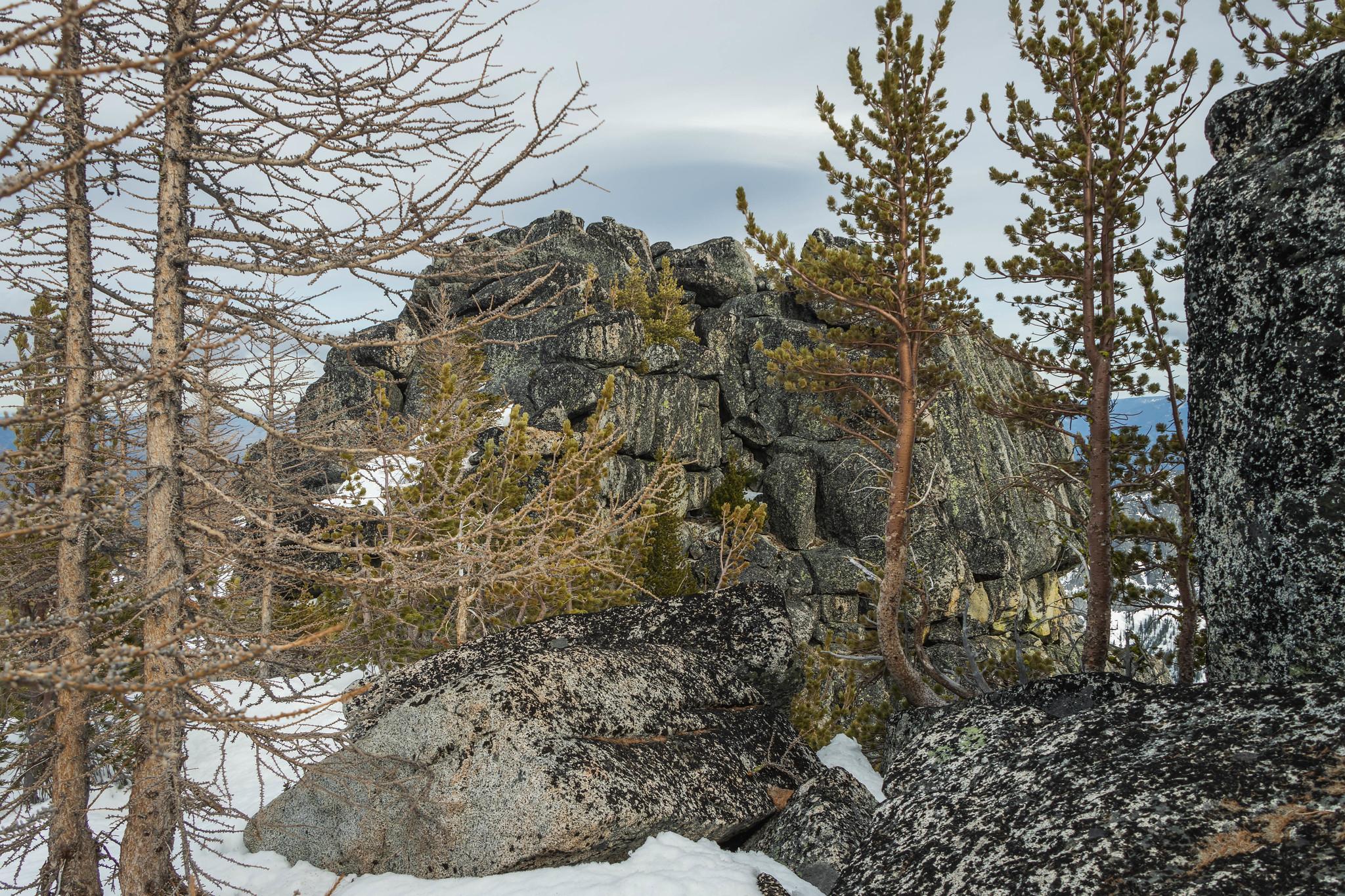The actual summit on Three Musketeers Ridge