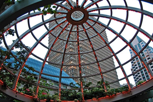 Trellis Dome
