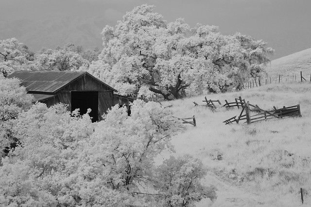 Abandoned Barn and Yard, IR