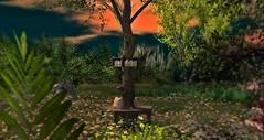 Poet's Tree