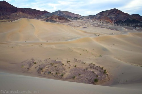Bowl in the sand dunes, Ibex Dunes, Death Valley National Park, California