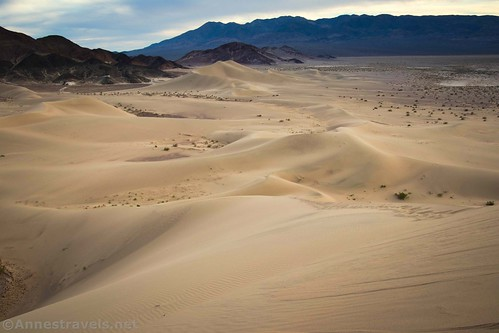 Views south from the top of the tallest dune in the Ibex Dunes, Death Valley National Park, California
