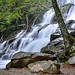 Waterfall Virginia