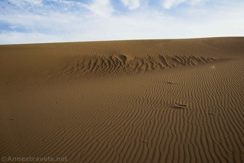 Ripples in the sand at the Ibex Dunes, Death Valley National Park, California