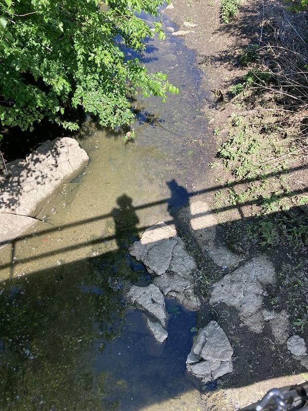 Alan Logan Shadow Selfie