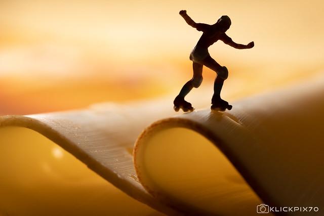 Cheese Skater