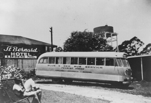 queensland buses transports publictransport coach stbernardshotel hotel mounttamborine